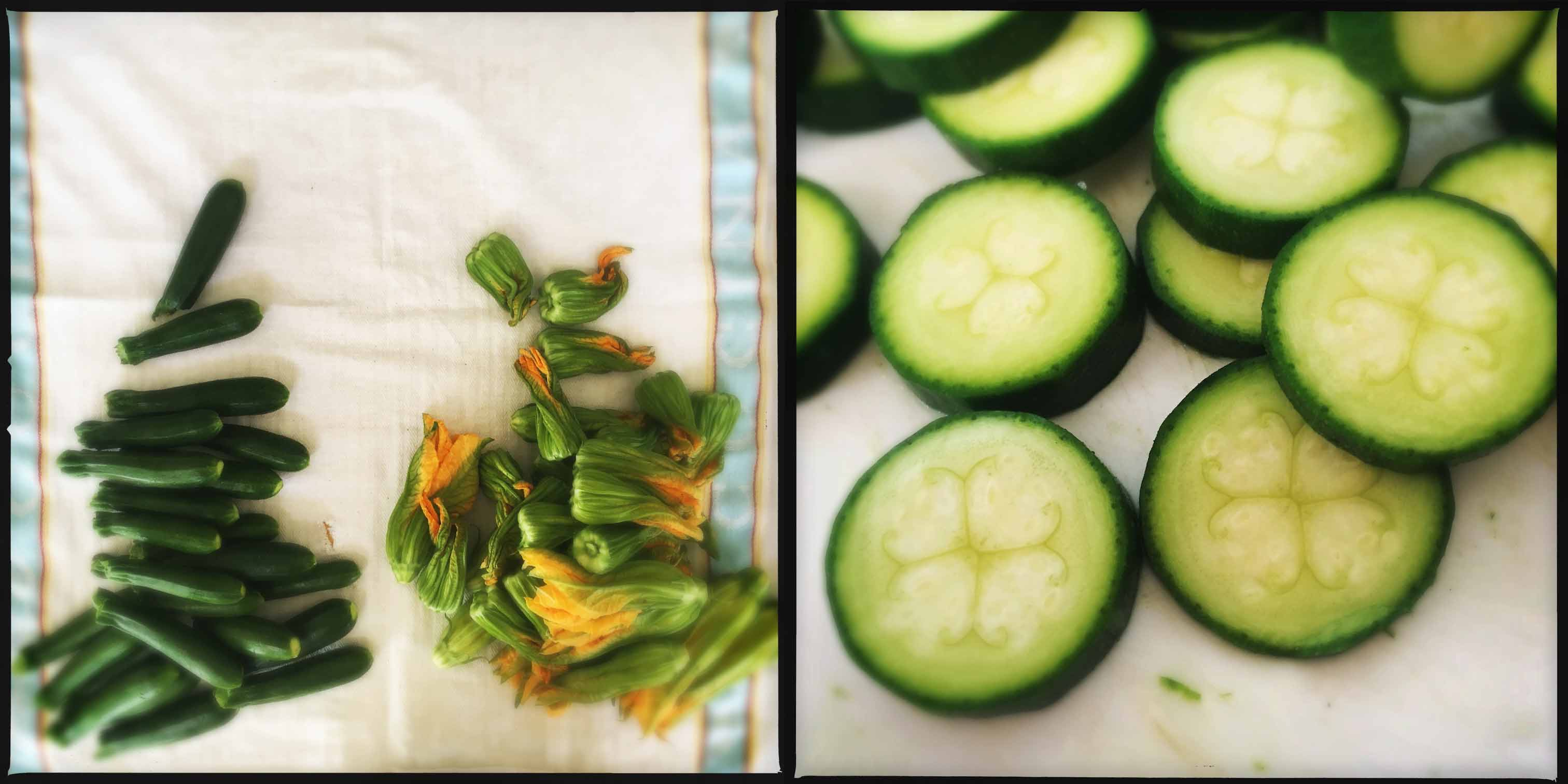 Maltagliati con fiori di zucca, zucchine, zafferano e speck