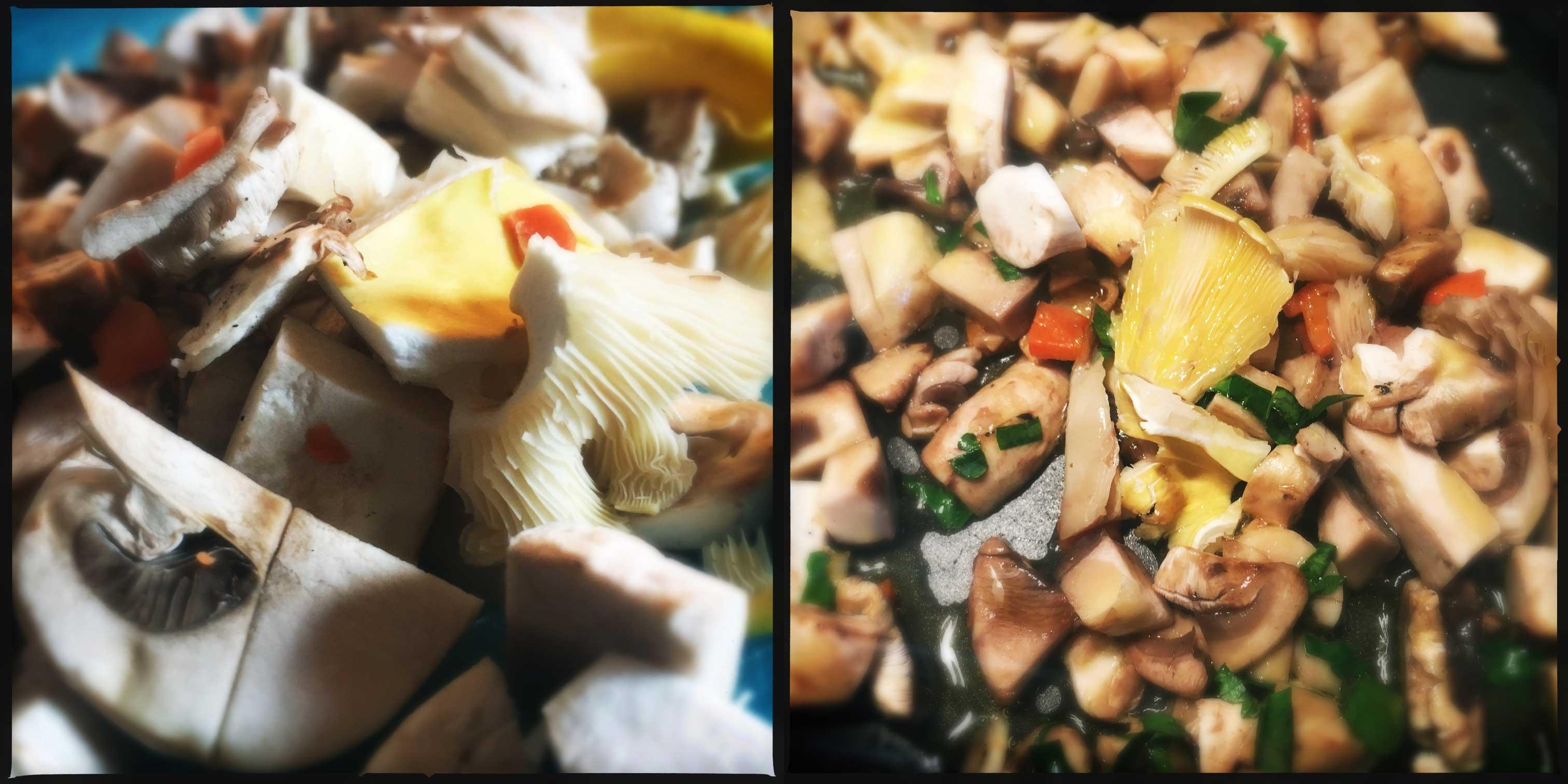 CROSTONI funghi E BRIE