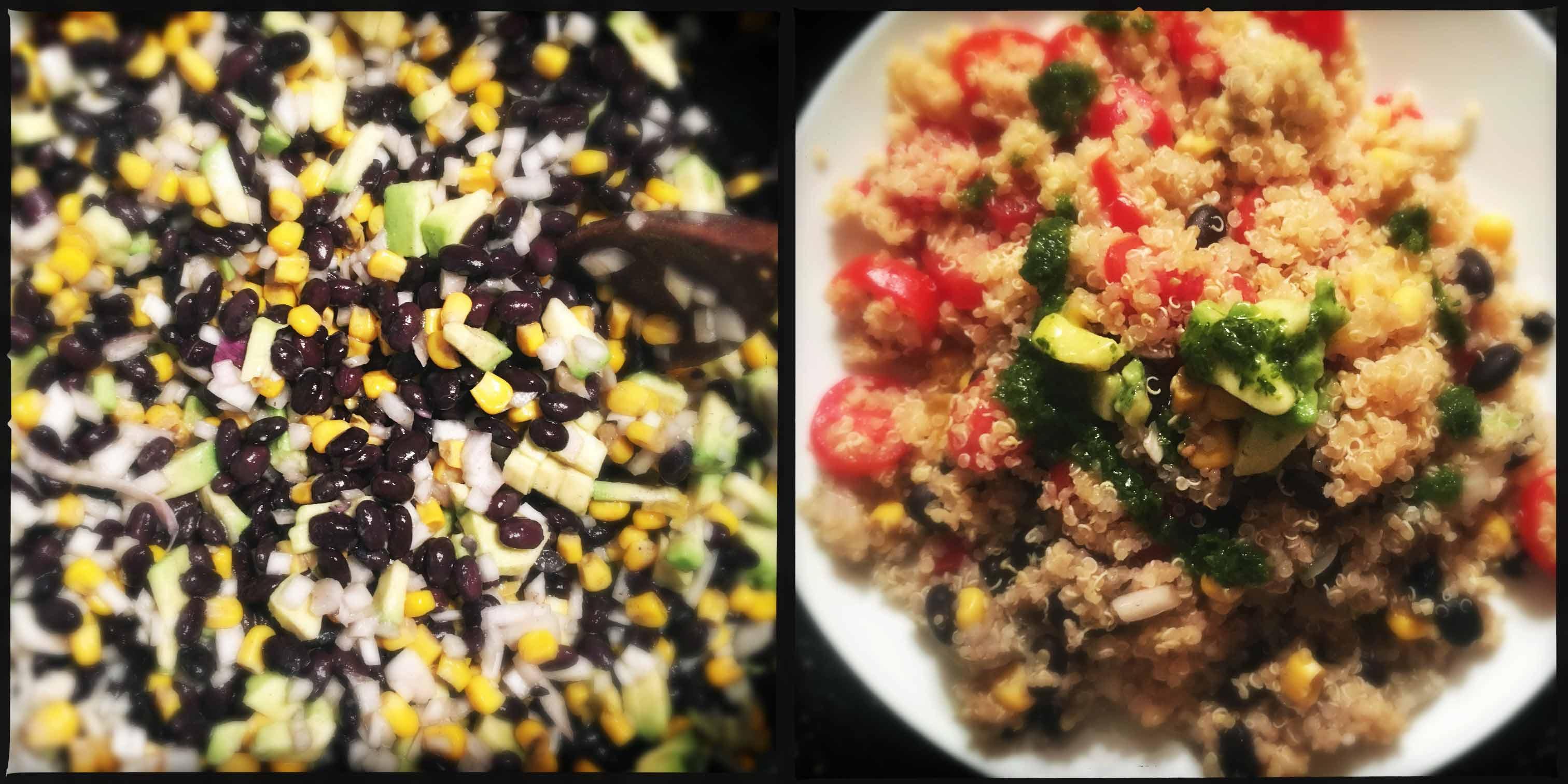 quinoa messicana