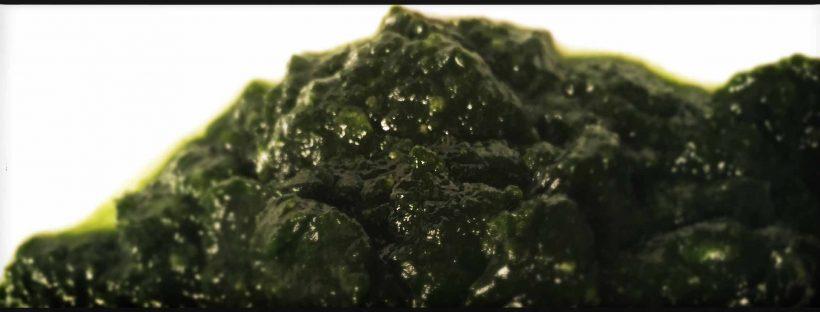 tortelli verdi dolci